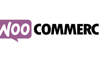 10 des Meilleures Extensions WooCommerce pour Booster for Site Internet WordPress